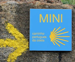 Camino by Ultreya Tours Main Photo